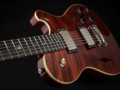 Nautilus Hollowbody